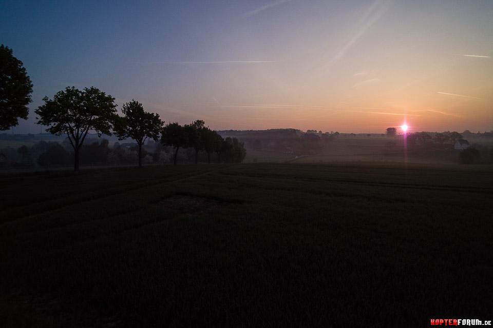 Sonnenaufgang an der Palz